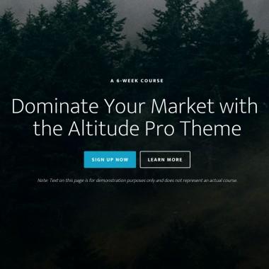 Altitude Pro Theme Examples